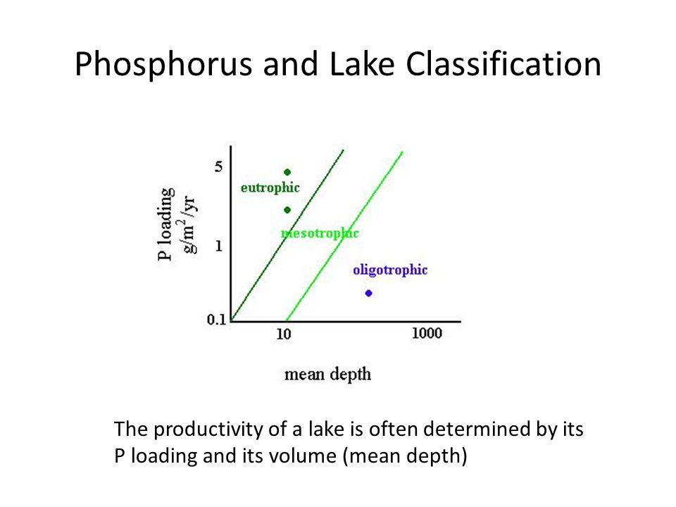 Lake Productivity Classification Total Phosphorus g/L Ultra-oligotrophic <5 Oligotrophic5-10 Mesotrophic10-30 Eutrophic30-100 Hypereutrophic >100