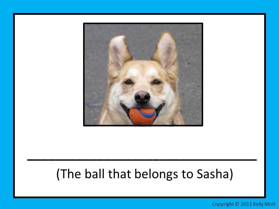 _________________________________ (The ball that belongs to Sasha) Copyright © 2011 Kelly Mott