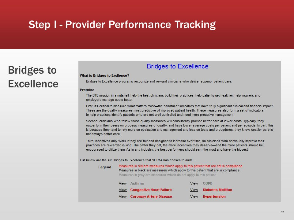 Bridges to Excellence 37 Step I - Provider Performance Tracking