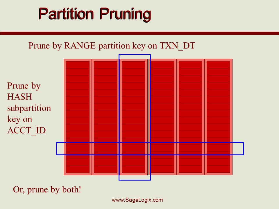www.SageLogix.com Partition Pruning Prune by RANGE partition key on TXN_DT Prune by HASH subpartition key on ACCT_ID Or, prune by both!