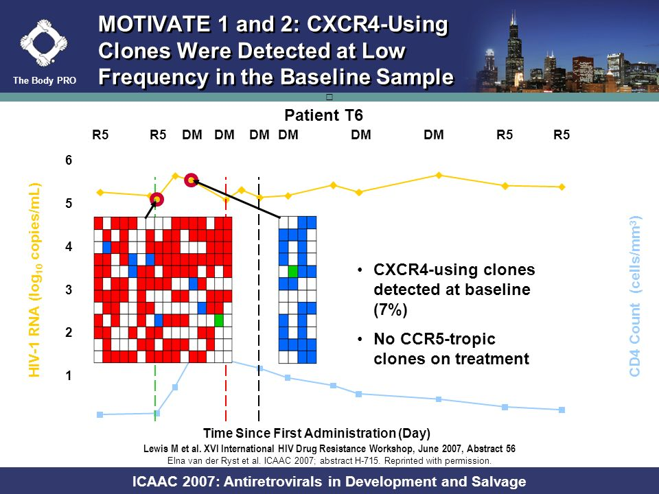 The Body PRO ICAAC 2007: Antiretrovirals in Development and Salvage R5 X4 A) Pure B) Mixed MOTIVATE 1 and 2: Viral Populations That May Exist Within a Patient R X X X X X X X X X X X X X X X X X X R R R R R R R R R R R R R R R R R R R R D D D D D D D D D D D D D D D D D D DD R X X X X X X X X XX X X X X XX X X X X X X X X X X X X X X X X X X R R R R R R R R R R R R R R R R R R R R R R R R R R R D D D D D D Elna van der Ryst et al.