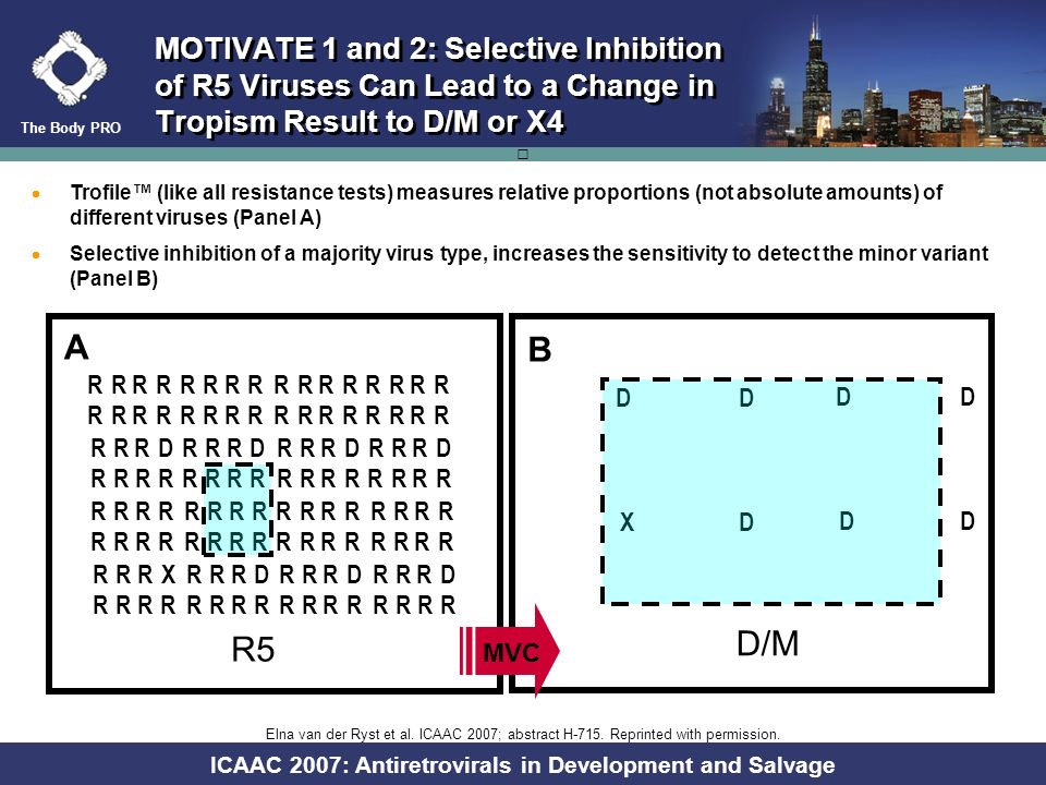 The Body PRO ICAAC 2007: Antiretrovirals in Development and Salvage -1000100200300 0 100 200 300 400 500 MOTIVATE 1 and 2: CXCR4-Using Clones Were Det