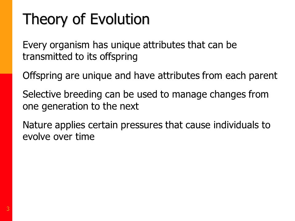 3 Theory of Evolution Every organism has unique attributes that can be transmitted to its offspring Offspring are unique and have attributes from each