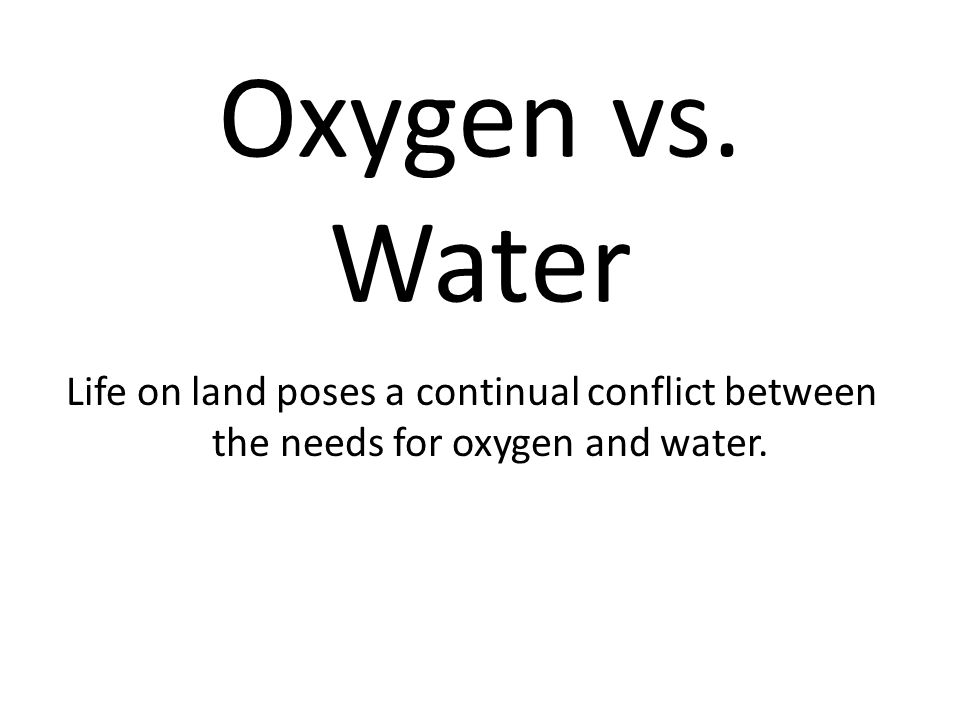 Oxygen vs. Water Life on land poses a continual conflict between the needs for oxygen and water.