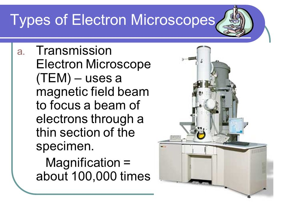 Types of Microscopes 3.