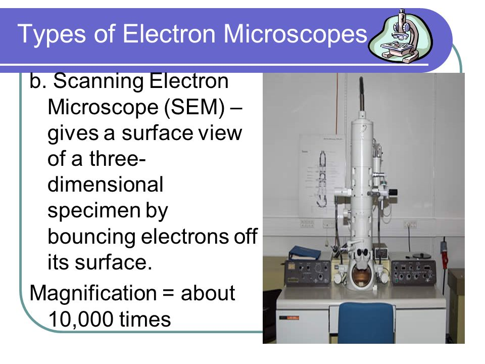 Types of Electron Microscopes a.