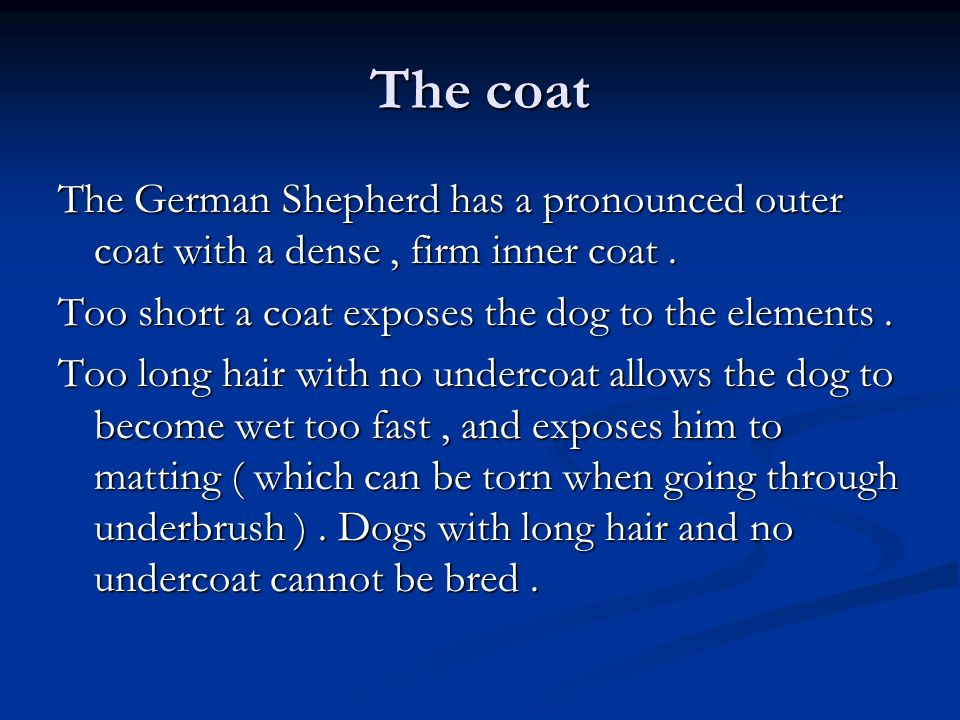 The coat The German Shepherd has a pronounced outer coat with a dense, firm inner coat. Too short a coat exposes the dog to the elements. Too long hai