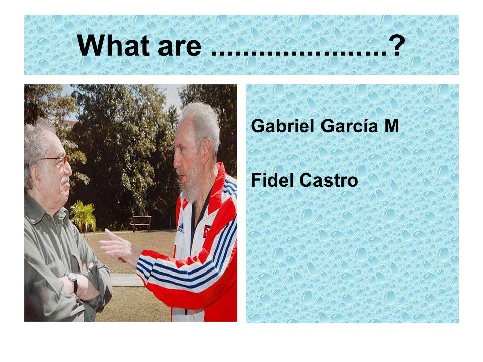 What are......................? Gabriel García M Fidel Castro