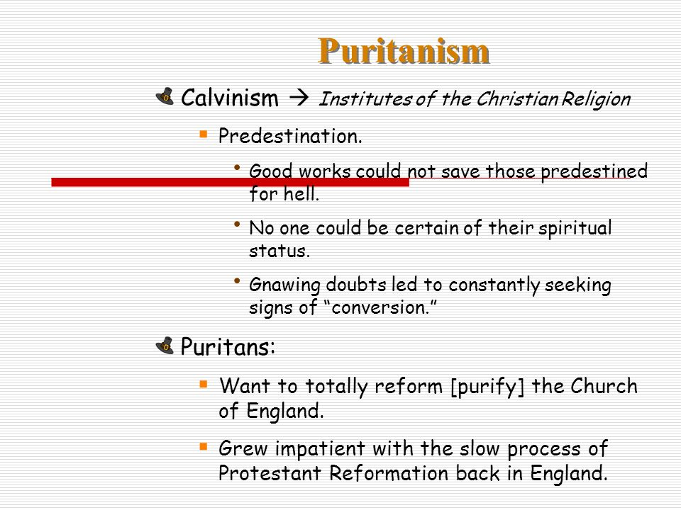 Puritanism Calvinism Institutes of the Christian Religion Predestination.