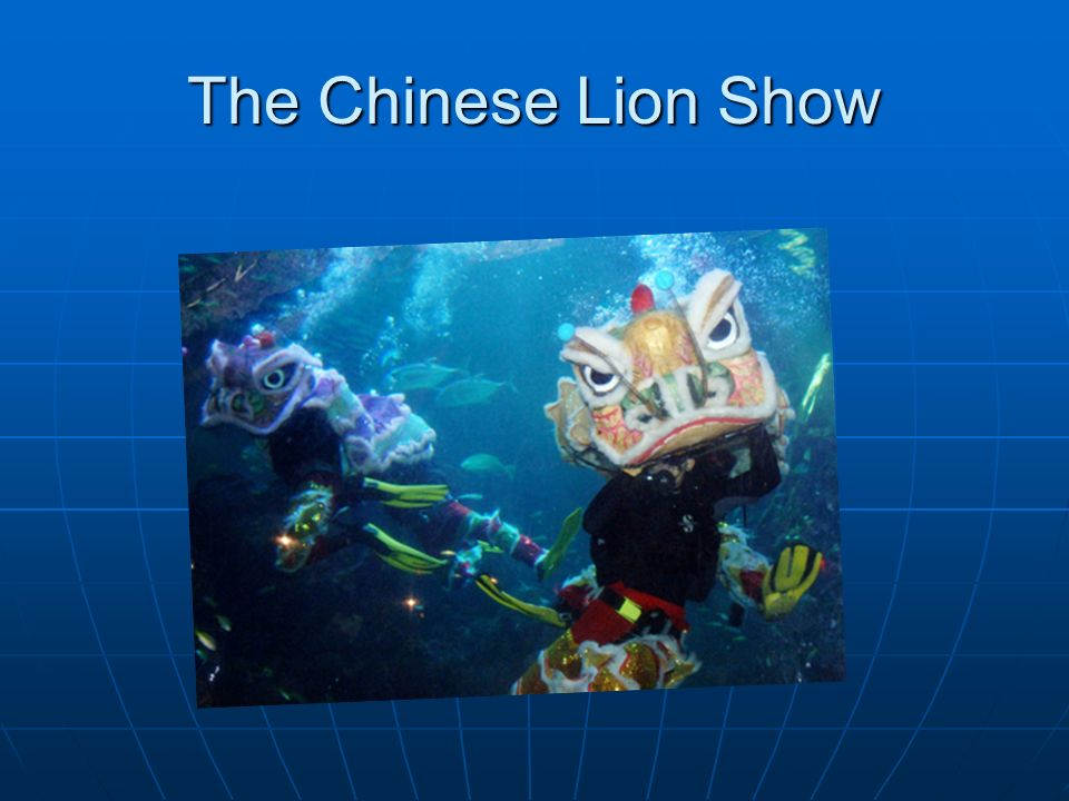 The Chinese Lion Show