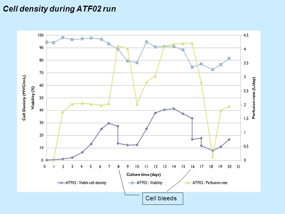 Cell density during ATF02 run Cell bleeds