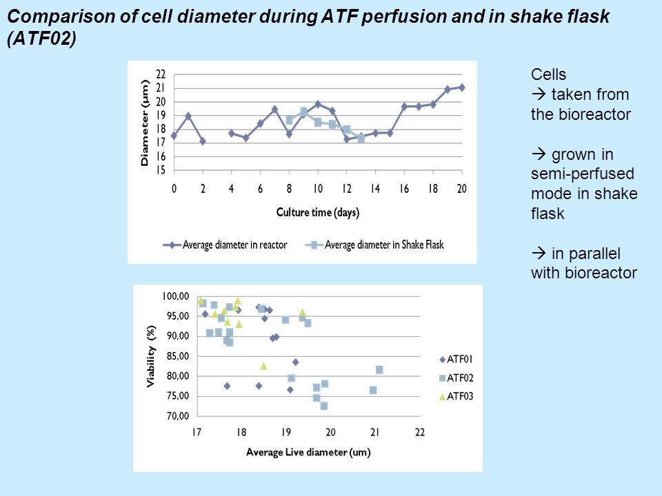 Comparison of cell diameter during ATF perfusion and in shake flask (ATF02) Cells taken from the bioreactor grown in semi-perfused mode in shake flask