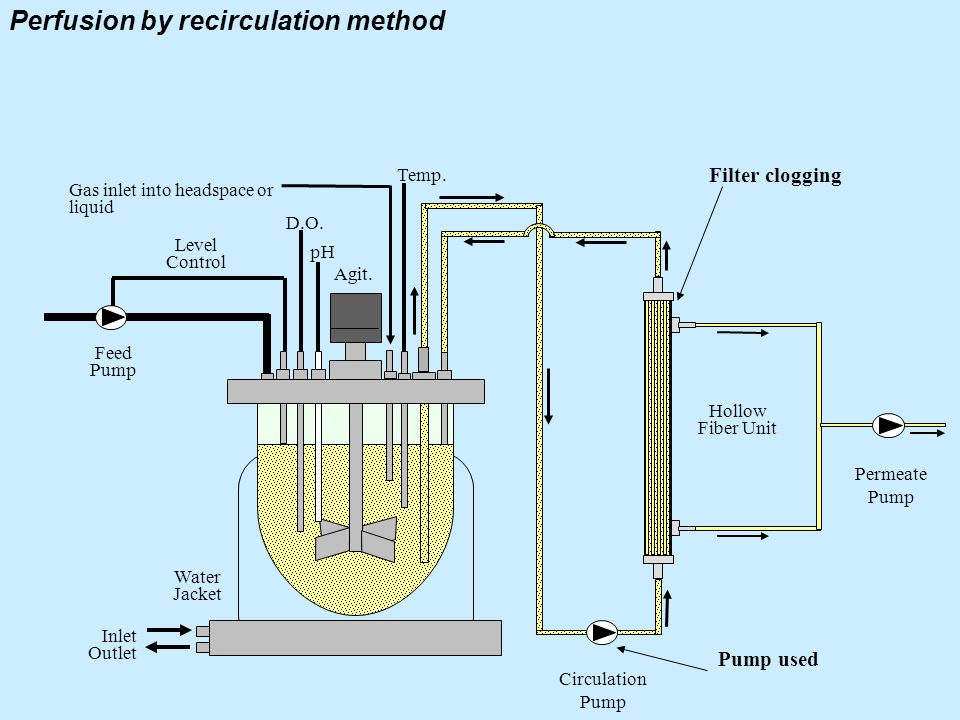 Perfusion by recirculation method Level Control Feed Pump Water Jacket Inlet Outlet D.O. pH Agit. Temp. Hollow Fiber Unit Circulation Pump Permeate Pu