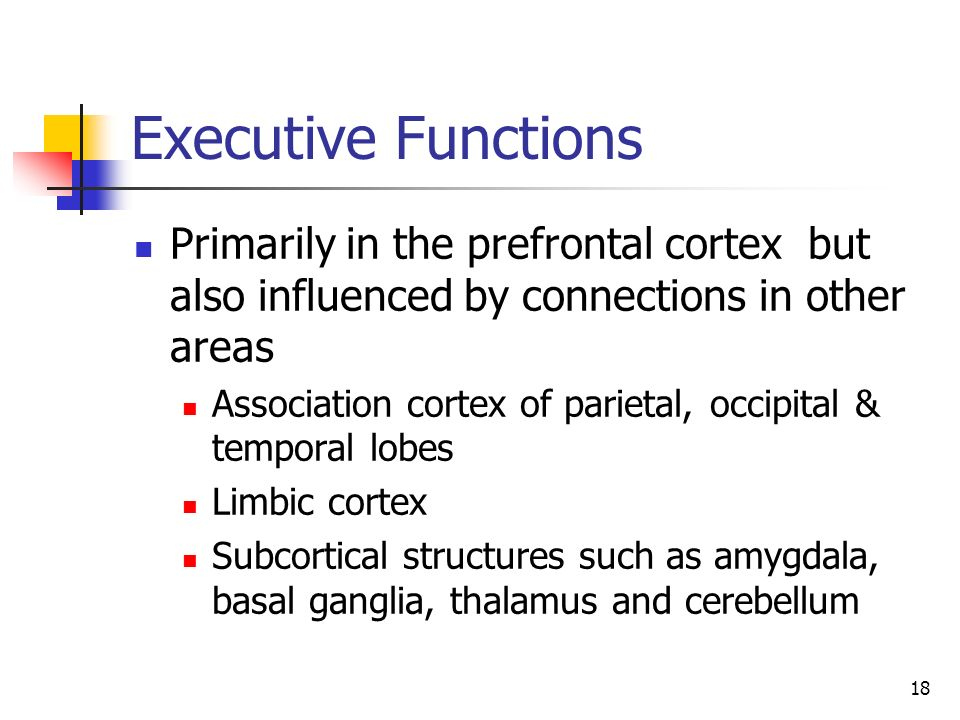 18 Executive Functions Primarily in the prefrontal cortex but also influenced by connections in other areas Association cortex of parietal, occipital
