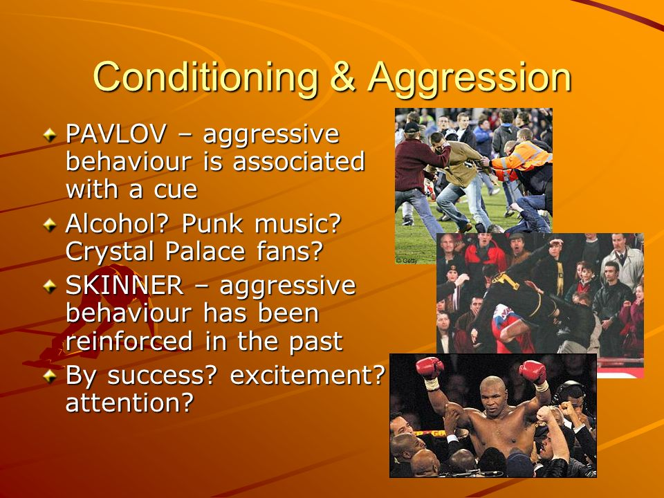 Conditioning & Aggression PAVLOV – aggressive behaviour is associated with a cue Alcohol? Punk music? Crystal Palace fans? SKINNER – aggressive behavi