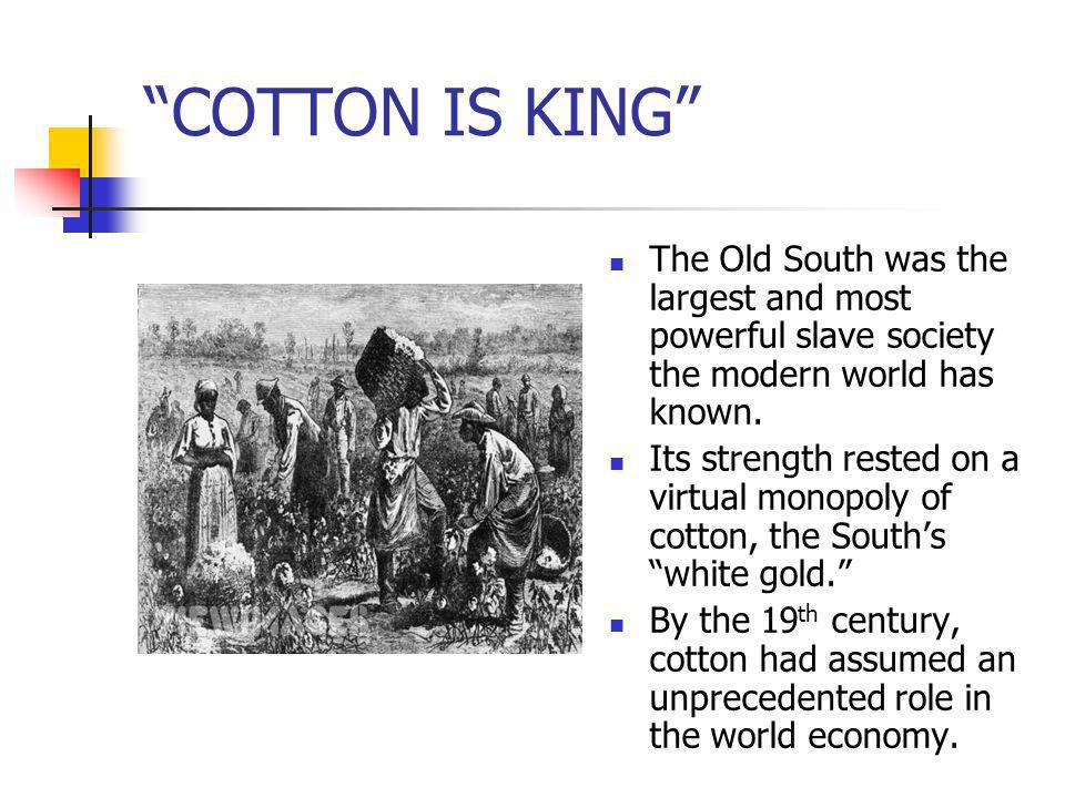 COTTON IS KING The Old South was the largest and most powerful slave society the modern world has known. Its strength rested on a virtual monopoly of
