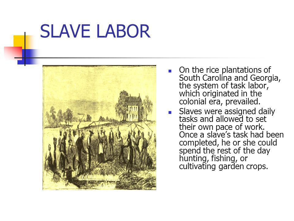 SLAVE LABOR On the rice plantations of South Carolina and Georgia, the system of task labor, which originated in the colonial era, prevailed. Slaves w