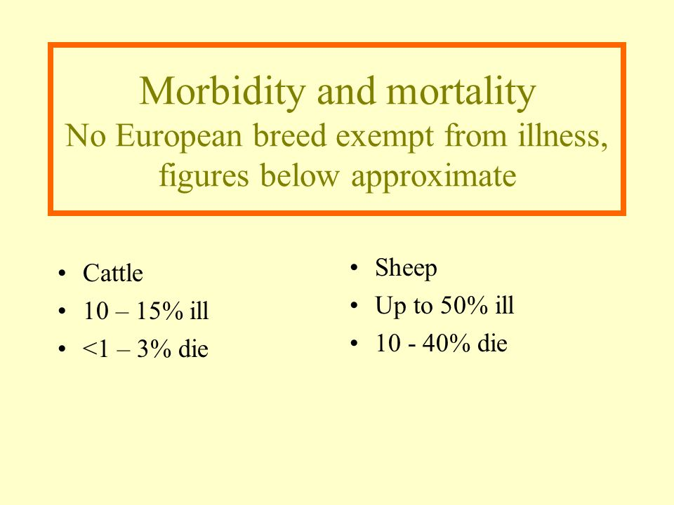 Morbidity and mortality No European breed exempt from illness, figures below approximate Cattle 10 – 15% ill <1 – 3% die Sheep Up to 50% ill 10 - 40%