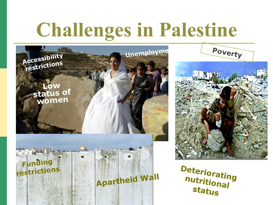 Challenges in Palestine Low status of women Poverty Poor quality of care Accessibility restrictions Deteriorating nutritional status Unemployment Funding restrictions Apartheid Wall