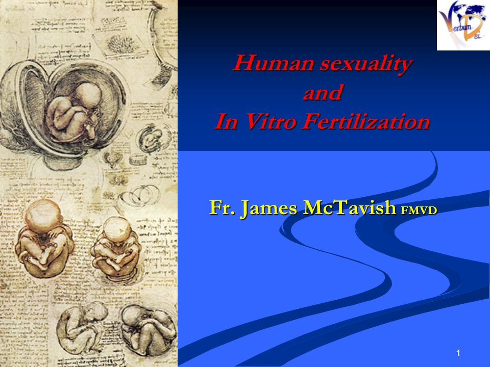 16/01/2014 1 Human sexuality and In Vitro Fertilization Fr. James McTavish FMVD Fr. James McTavish FMVD