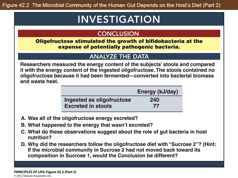 Figure 42.2 The Microbial Community of the Human Gut Depends on the Hosts Diet (Part 2)