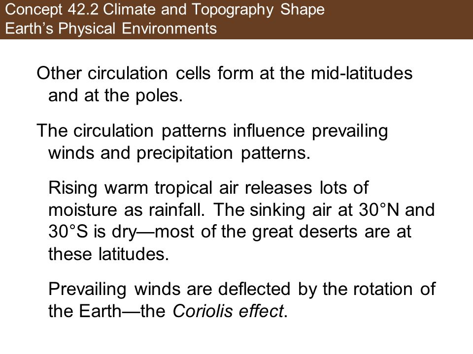 Concept 42.2 Climate and Topography Shape Earths Physical Environments Other circulation cells form at the mid-latitudes and at the poles. The circula