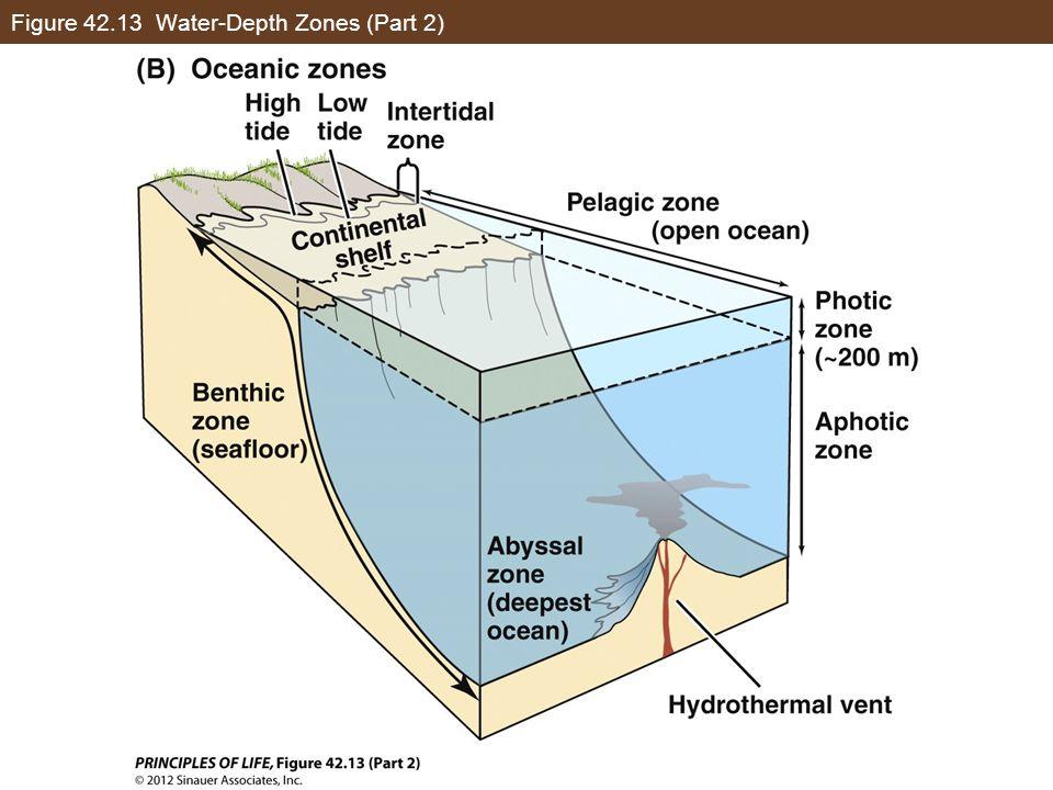 Figure 42.13 Water-Depth Zones (Part 2)