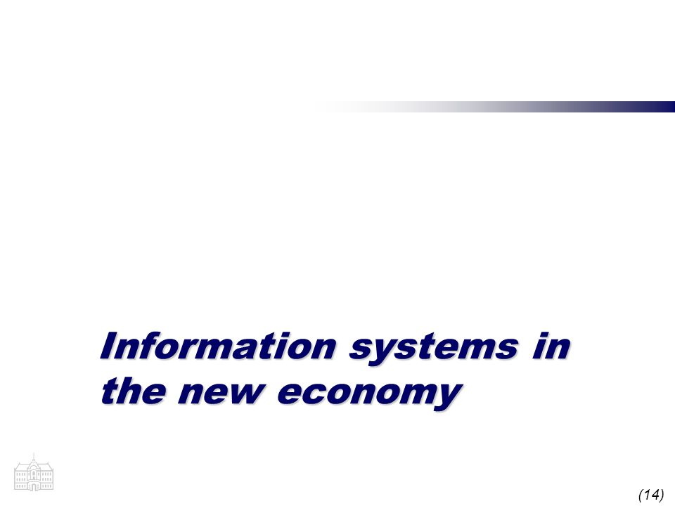 (14) Information systems in the new economy
