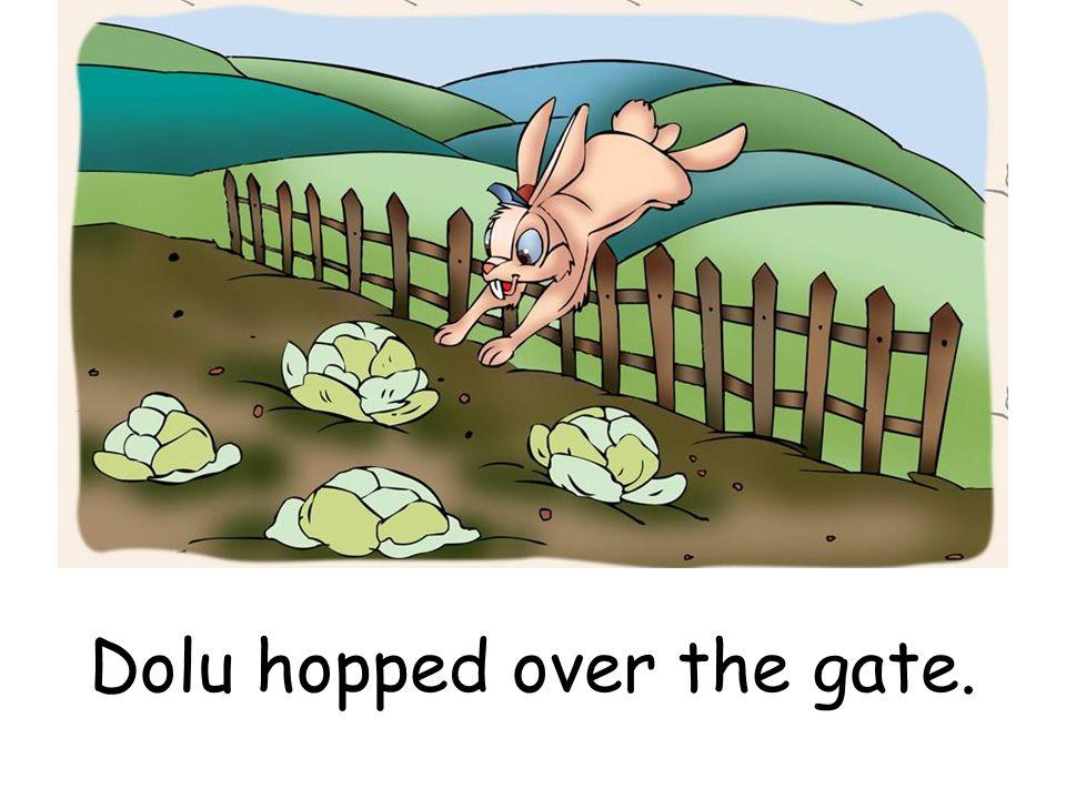 Dolu hopped over the gate.