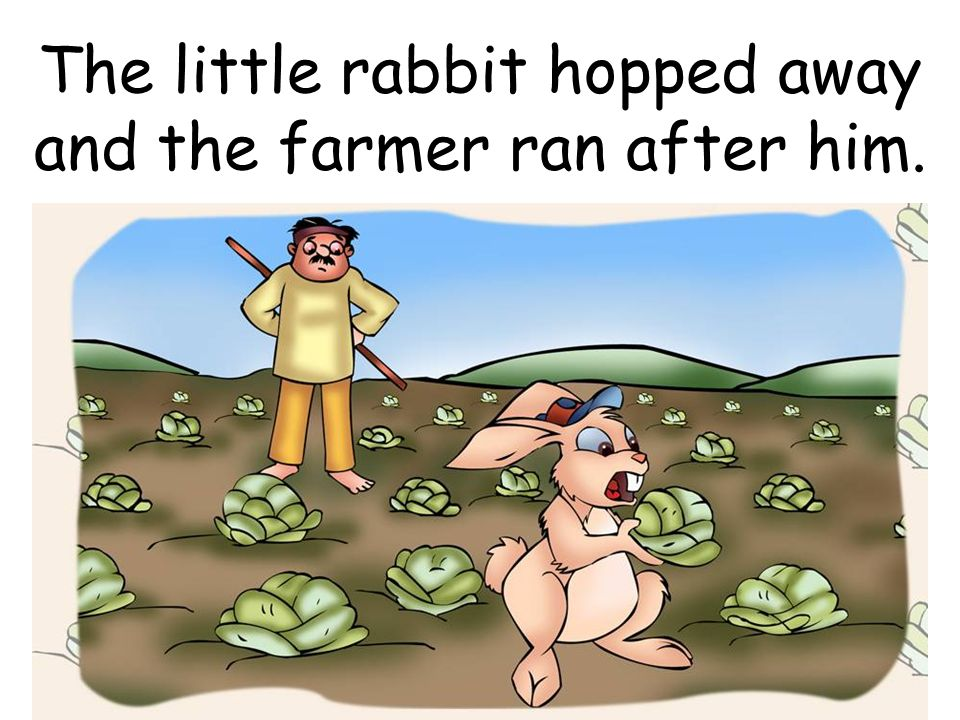 The little rabbit hopped away and the farmer ran after him.