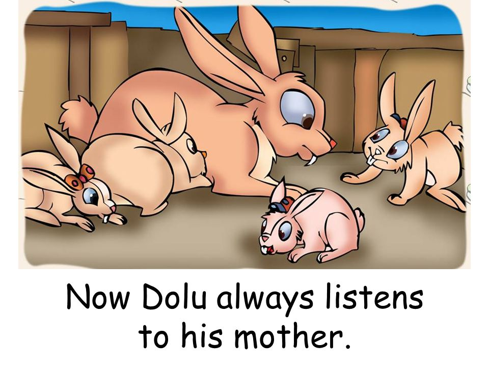 Now Dolu always listens to his mother.