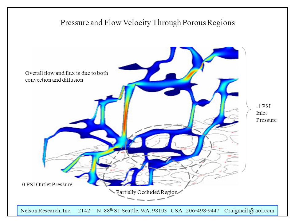 Nelson Research, Inc. 2142 – N. 88 th St. Seattle, WA. 98103 USA 206-498-9447 Craigmail @ aol.com Pressure and Flow Velocity Through Porous Regions.1