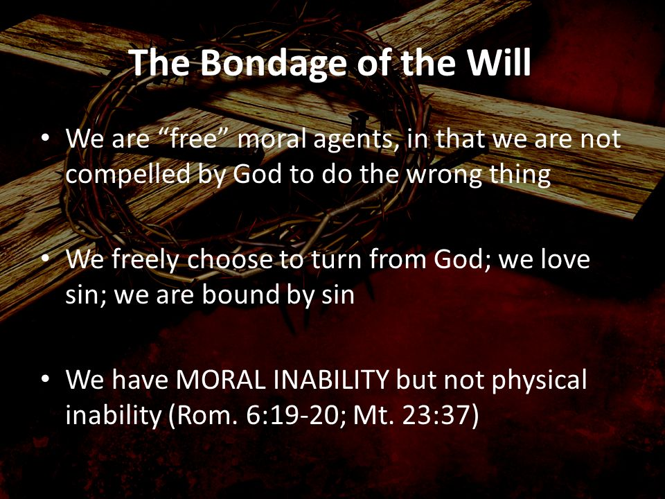 We are free moral agents, in that we are not compelled by God to do the wrong thing We freely choose to turn from God; we love sin; we are bound by si