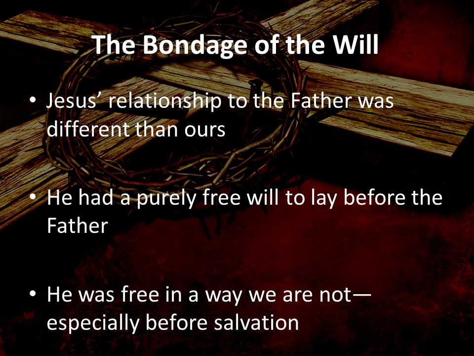 The Bondage of the Will Jesus relationship to the Father was different than ours He had a purely free will to lay before the Father He was free in a w