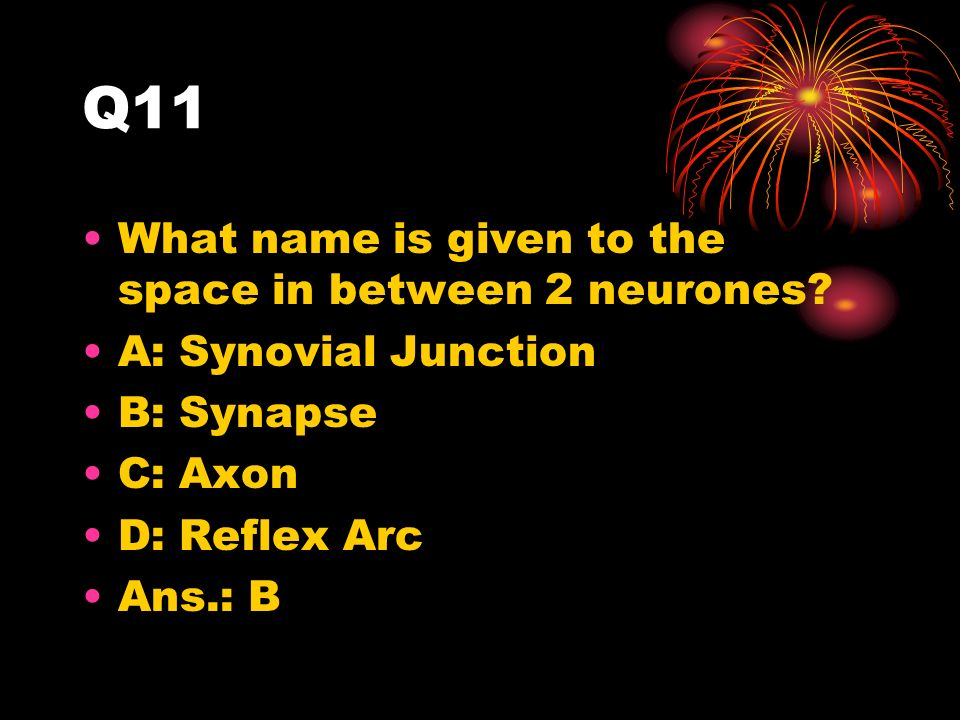 Q11 What name is given to the space in between 2 neurones.
