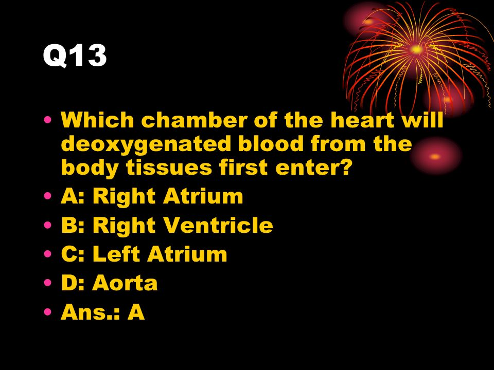 Q13 Which chamber of the heart will deoxygenated blood from the body tissues first enter.