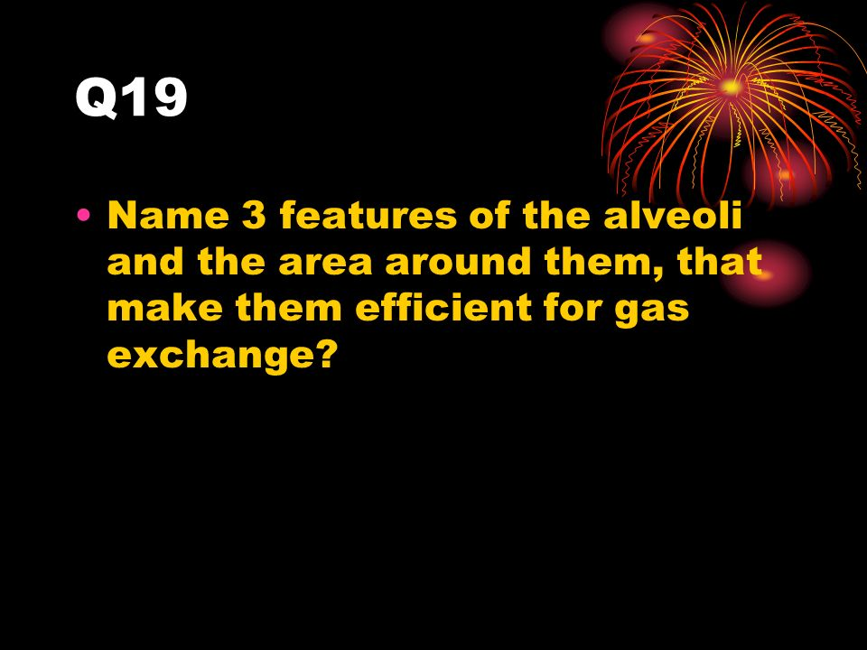 Q19 Name 3 features of the alveoli and the area around them, that make them efficient for gas exchange