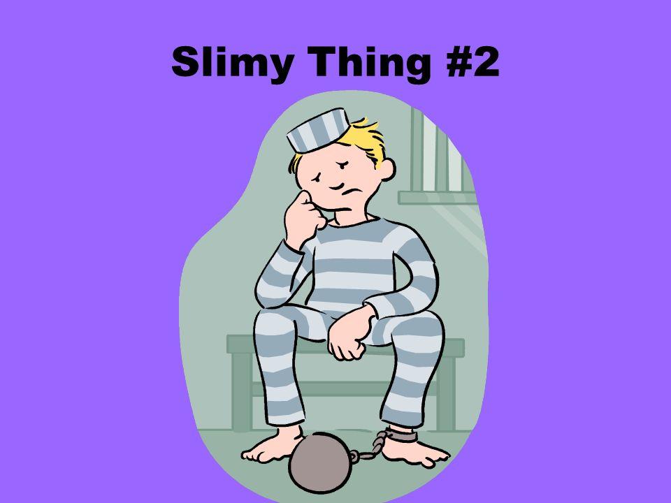 Slimy Thing #2