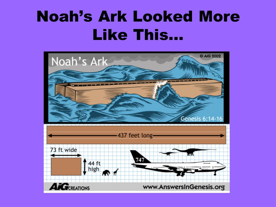 Noahs Ark Looked More Like This…