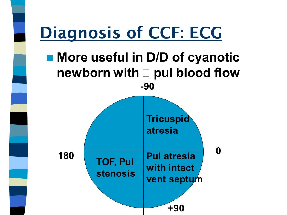 Diagnosis of CCF: ECG More useful in D/D of cyanotic newborn with pul blood flow Tricuspid atresia Pul atresia with intact vent septum TOF, Pul stenos