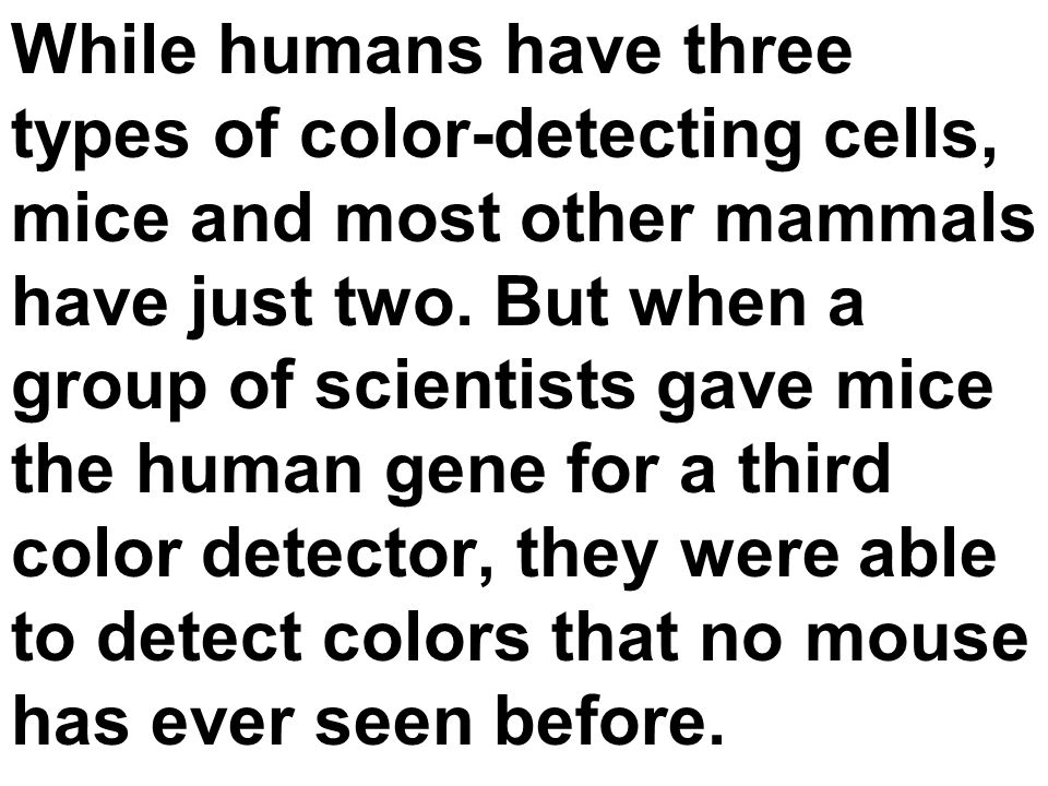While humans have three types of color-detecting cells, mice and most other mammals have just two. But when a group of scientists gave mice the human