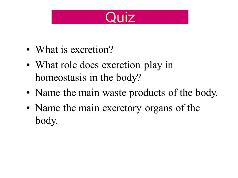 Quiz What is excretion? What role does excretion play in homeostasis in the body? Name the main waste products of the body. Name the main excretory or