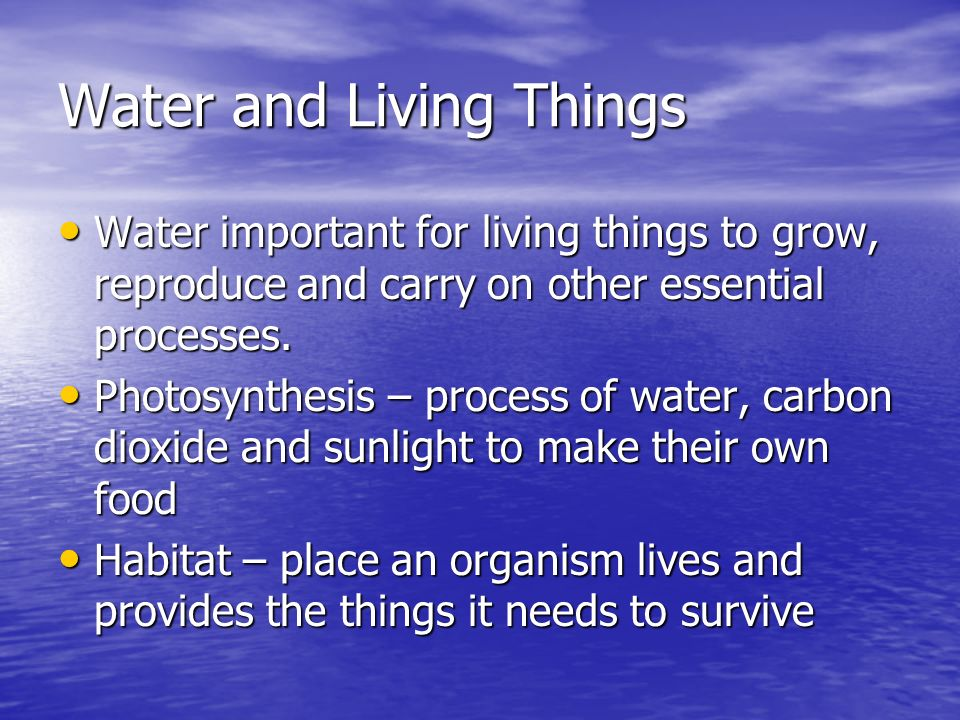 Water and Living Things Water important for living things to grow, reproduce and carry on other essential processes. Water important for living things