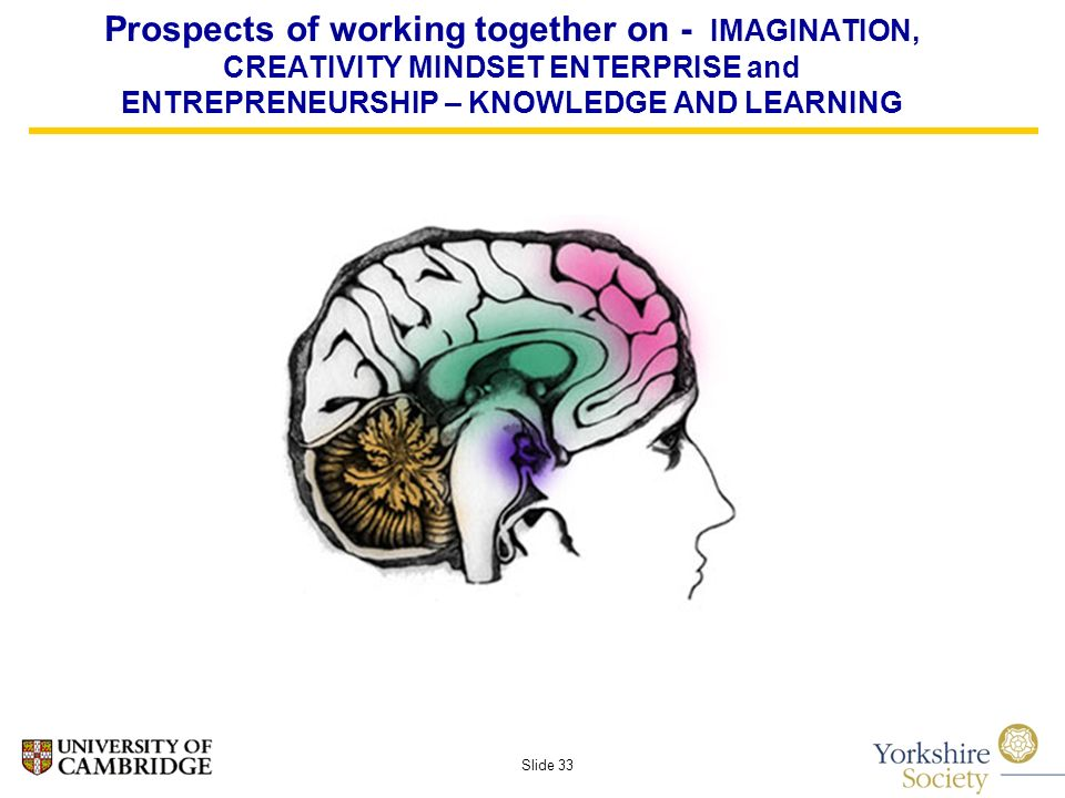 Slide 33 Prospects of working together on - IMAGINATION, CREATIVITY MINDSET ENTERPRISE and ENTREPRENEURSHIP – KNOWLEDGE AND LEARNING