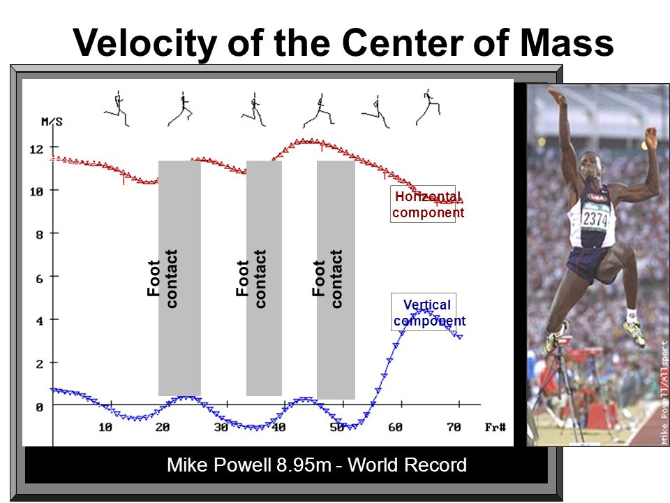 Velocity of the Center of Mass Foot contact Foot contact Foot contact Horizontal component Vertical component Mike Powell 8.95m - World Record