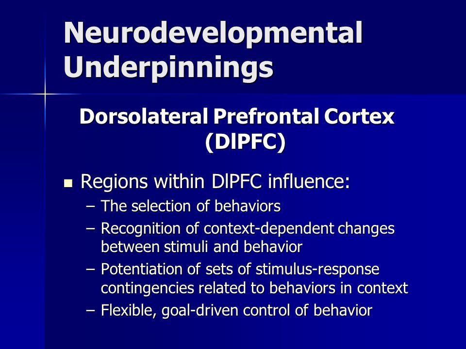 Neurodevelopmental Underpinnings Dorsolateral Prefrontal Cortex (DlPFC) Regions within DlPFC influence: Regions within DlPFC influence: –The selection