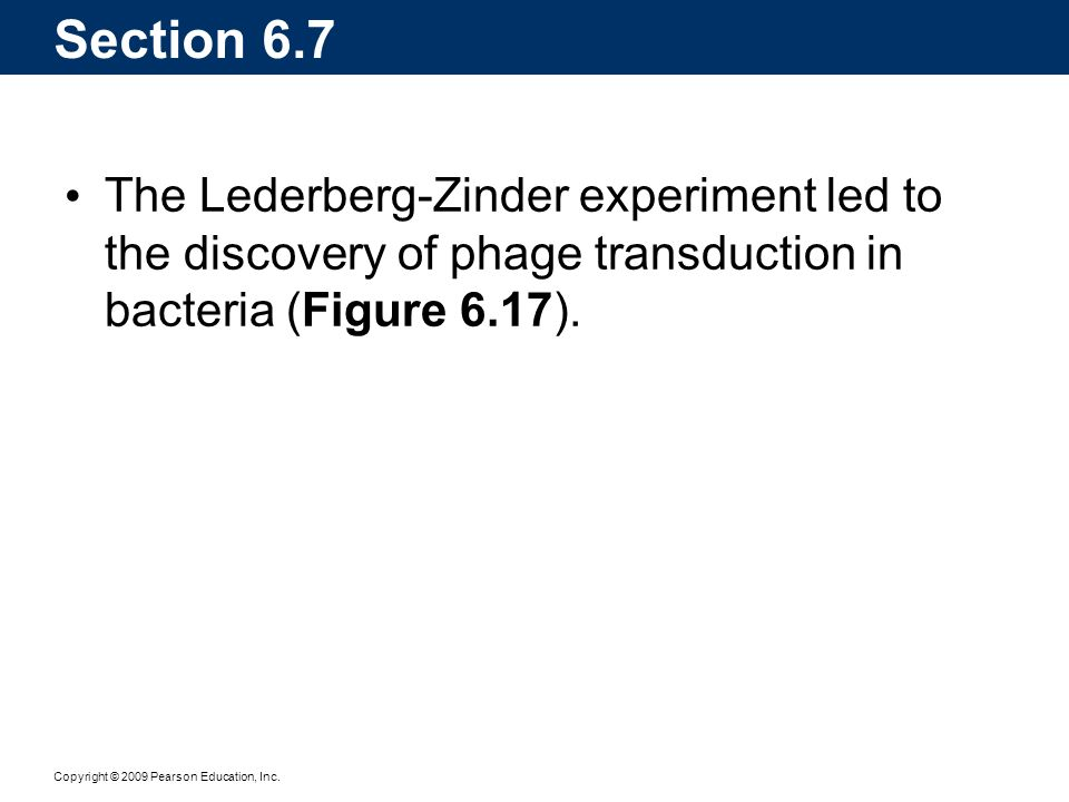 Copyright © 2009 Pearson Education, Inc. Section 6.7 The Lederberg-Zinder experiment led to the discovery of phage transduction in bacteria (Figure 6.