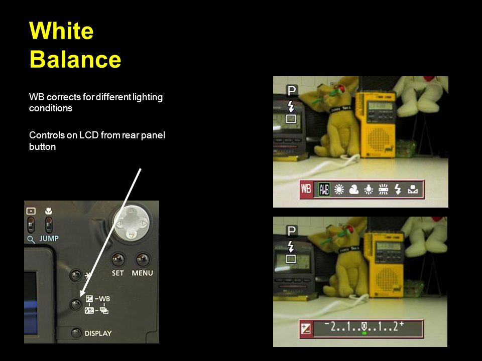 White Balance WB corrects for different lighting conditions Controls on LCD from rear panel button