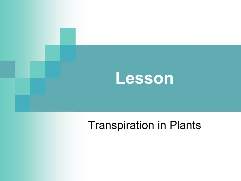 Lesson Transpiration in Plants