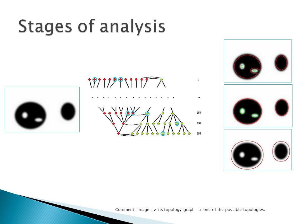 Comment: Image -> its topology graph -> one of the possible topologies.